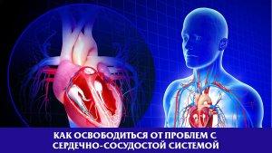 Как освободиться от проблем с сердечно-сосудистой системы