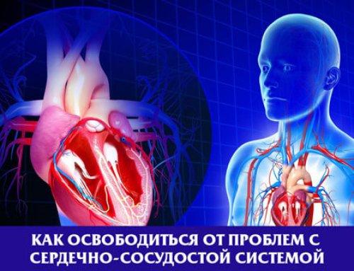 Как освободиться от проблем с сердечно-сосудистой системой